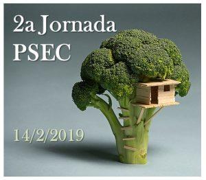 2aJornadaPSEC-300x262.jpg
